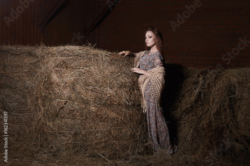 Beautiful girl in the hayloft Poster
