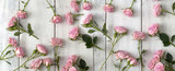 pink roses on wooden background - 162385395