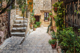 Narrow cobbled street with flowers in the old village Tourrettes-sur-Loup , France.