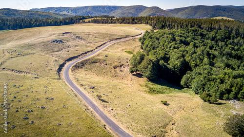 Deurstickers Droogte une route entre prairie et forêt avec en fond une chaîne de montagne