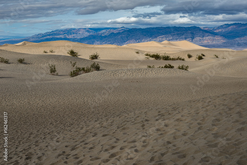 Mesquite Flat Sand Dunes, Death Valley National Park - 162461317