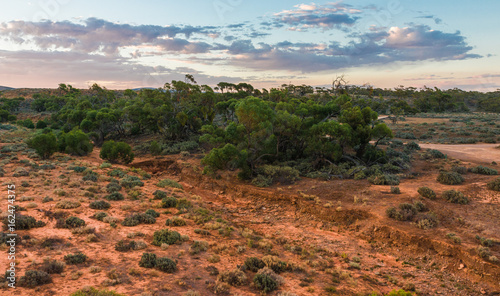 Tuinposter Canyon Australian outback landscape at sunset. South Australian rural scenery at Red Banks Conservation Park