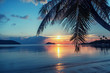 Magnificent beautiful bright tropical sunset, sun, palms, sandy beach