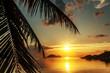 Magnificent beautiful bright tropical sunset, sun, palms, sandy beach