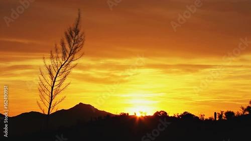 Foto op Plexiglas Bruin desert sunset