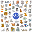 cartoon cat characters large set - 162517706