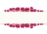 Vector. Orchid flowers around blank text rectangle. Text template banner. Miltonia or miltonopsis orchid flowers done with mesh.