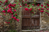 Roses and Old Door in Mombaldone - 162637570