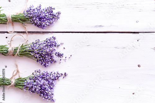 Border of bunches of aromatic purple lavender