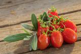 Tomaten - 162661515