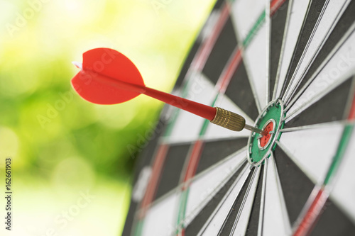 Darts in center of the target dartboard on a light green background Poster
