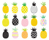 Fototapety Vector illustration set of pineapple in different styles.