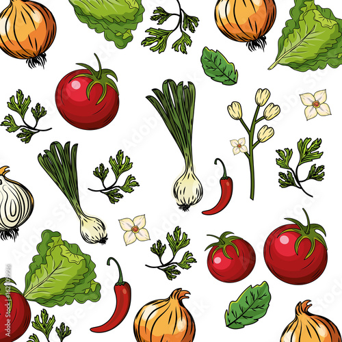 Fototapeta herbs and spices plants and organ food background