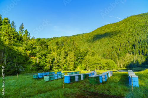 Bee hives somewhere in the mountains