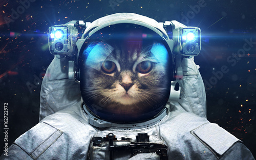 Science fiction space wallpaper with cat astronaut, incredibly beautiful planets, galaxies, dark and cold beauty of endless universe. Elements of this image furnished by NASA - 162722972