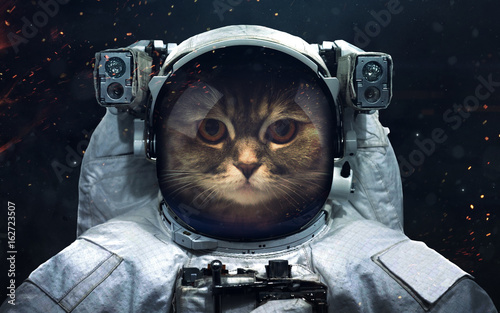 In de dag Nasa Science fiction space wallpaper with cat astronaut, incredibly beautiful planets, galaxies, dark and cold beauty of endless universe. Elements of this image furnished by NASA