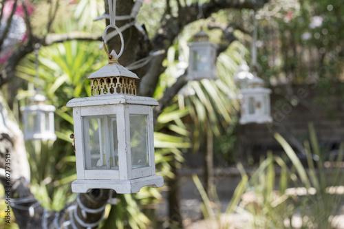 Lanterne bianche decorative appese ai rami di un albero Poster