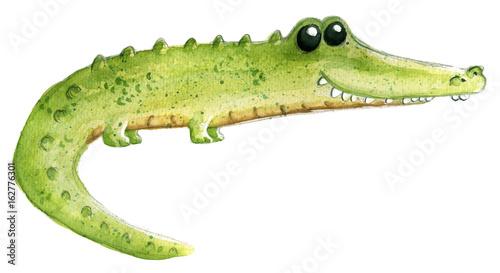 fototapeta na ścianę cocodrilo en acuarela para niños