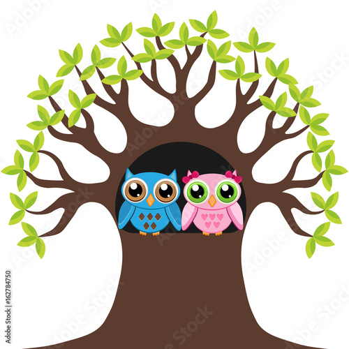Two owl in the tree hollow