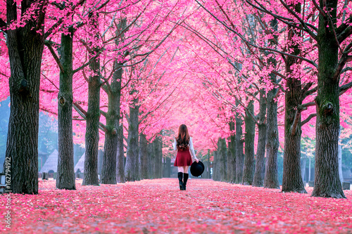 Fotobehang Candy roze Beautiful Girl with Pink Leaves in Nami Island, South Korea.
