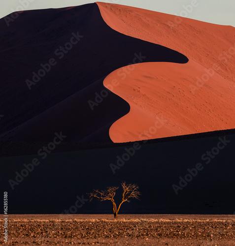 Foto op Canvas Baksteen Namib Desert