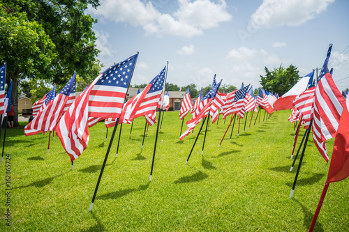 American Flags on a summer day