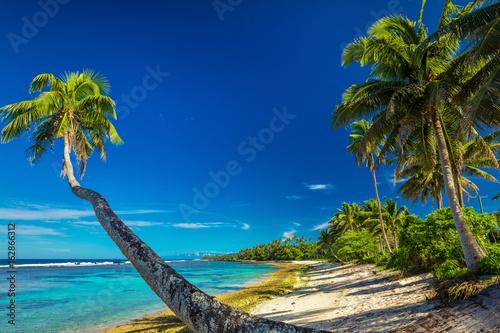 Tropical beach on south side of Samoa with many palm trees