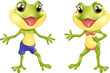 Beautiful humanoid frog - 162875755
