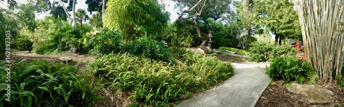 Panoramic view of a pebble path inside the Miami Beach Botanical Garden in Florida (United States of America) with a beautiful Japanese garden including giant bamboo and lush asian greenery
