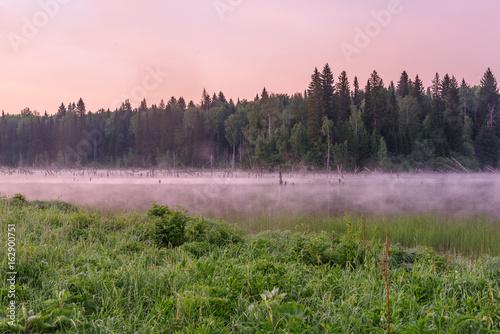 Papiers peints Rose clair / pale lake dawn pink fog forest