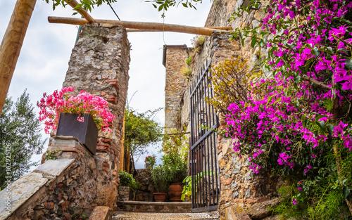Beautiful traditional street with flowers of the Portofino,  Liguria, Italy © olenaznakk