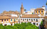 Séville, Quartier de Santa Cruz  - 162935769