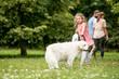 Kind und Retriever Hund
