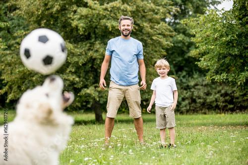 Hund jongliert Fußball auf der Nase