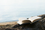 An old open book on a rock at the beach with defocused sea in the background. Reading, escapism, ideas and imagination concepts. - 162946969