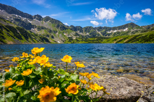Fototapety, obrazy : Tatra mountains landscape, Europe, Poland