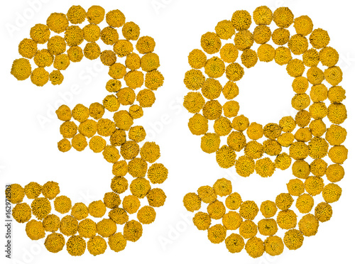 Poster Arabic numeral 39, thirty nine, from yellow flowers of tansy, isolated on white
