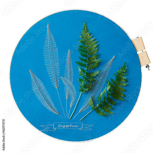 Blue embroidered fabric with fern leaves