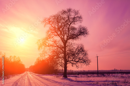 Foto op Canvas Candy roze Evening in countryside, road covered with snow at sunset light