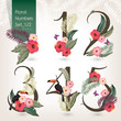 Vector illustration of floral numbers collection. A set of beautiful flowers and numbers wedding, anniversary, birthday and party. Design for banner, poster, card, invitation, brochure and scrapbook - 163010979