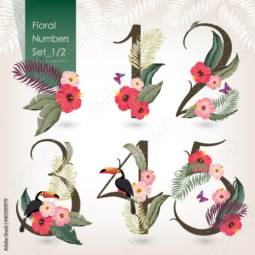 Vector illustration of floral numbers collection. A set of beautiful flowers and numbers wedding, anniversary, birthday and party. Design for banner, poster, card, invitation, brochure and scrapbook