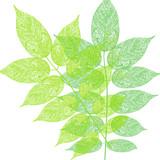 Baum Blätter Muster illustration - 163014528