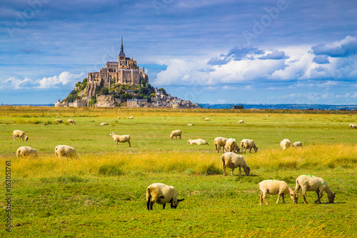 Le Mont Saint-Michel with sheep grazing on green meadows in summer, Normandy, Fr Poster