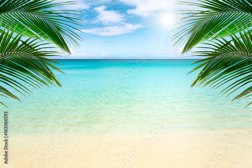 Sunny tropical beach with palm trees - 163066593