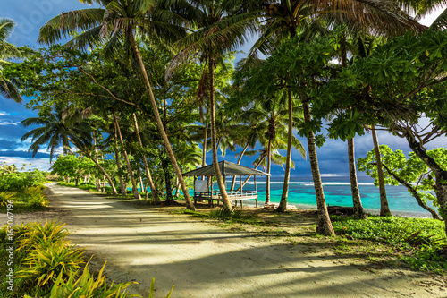 Tropical beach on Samoa Island with palm trees and dirt road