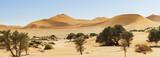 Dunes in the Namib Desert - 163067997