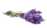 Lavender flowers bunch - 163104587