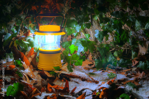 Poster Luminous hand lantern standing on the iced dry leaves of oak near wall with ivy