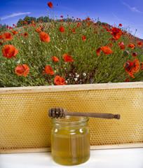 Honigglas mit Honigwabe Blumenwiese