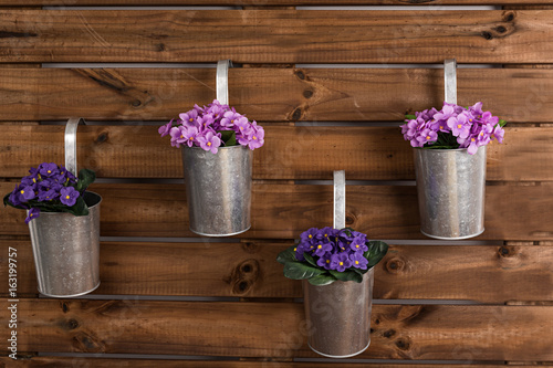 Violetas en maceteros sobre fondo de madera. Poster